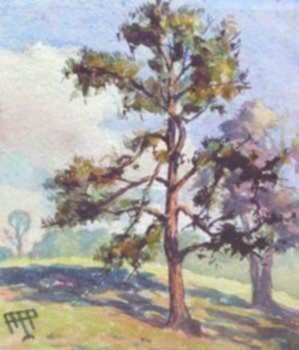 Watercolor by Aarne Parker: Yellow Pine, North Dana, Massachusetts, represented by Childs Gallery