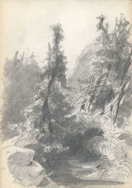 Drawing by Albert von Keller: Forest Study, represented by Childs Gallery
