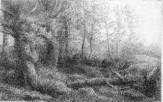 Print by Alphonse Legros: Lisiere de foret, represented by Childs Gallery