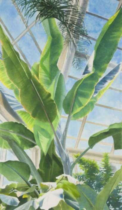 Watercolor by Ben Norris: Brooklyn Botanical Garden No. 1: Greenhouse Interior, represented by Childs Gallery
