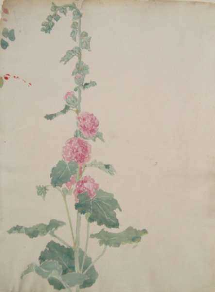 Drawing by Bryson Burroughs: [Pink Flowers], represented by Childs Gallery