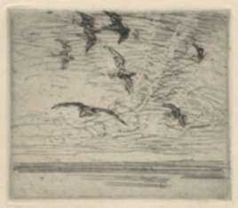 Print by Charles Woodbury: Gulls Near Sunken Ledge, represented by Childs Gallery