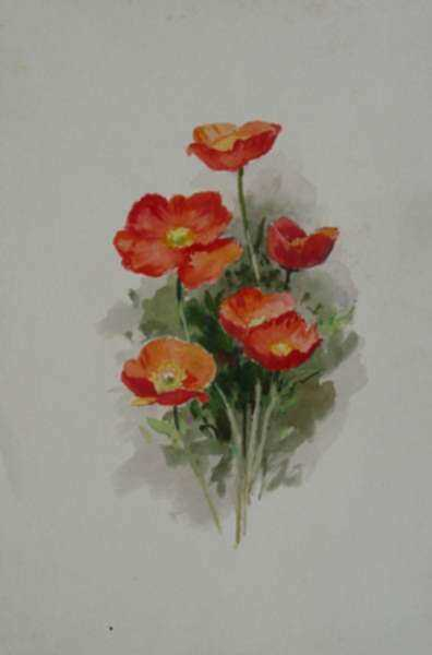 Watercolor by Henry W. Rice: Poppies, represented by Childs Gallery
