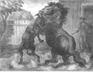Print by John Steuart Curry: Stallion and Jack Fighting, represented by Childs Gallery