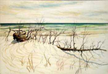 Drawing by Leo Meissner: [Gulf Coast, Florida, near Sanibel], represented by Childs Gallery