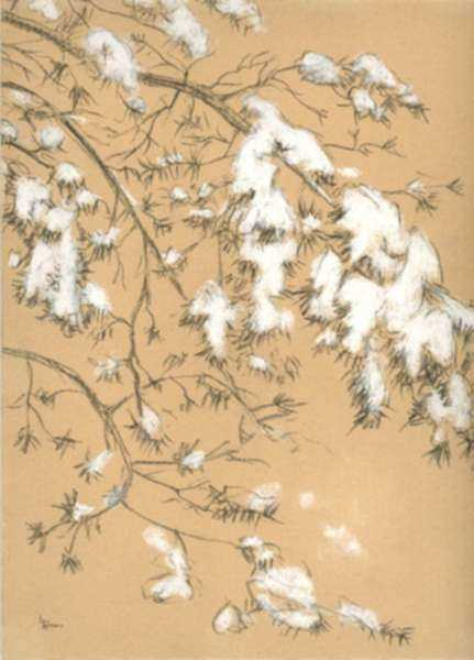 Pastel by Leo Meissner: [Snowy Bough], represented by Childs Gallery