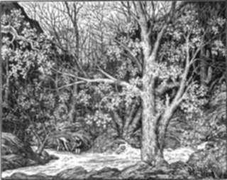 Print by Leo Meissner: Canyon Creek, represented by Childs Gallery