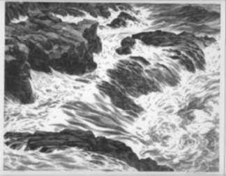 Print by Leo Meissner: Kelp Wash, represented by Childs Gallery