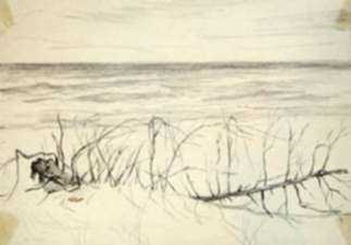 Drawing by Leo Meissner: Sandy Beach Gulf Coast, near Sanibel, Fla. [Florida], represented by Childs Gallery