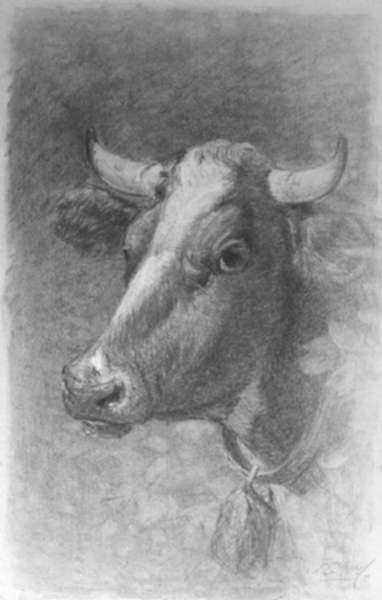 Drawing by Samuel L. Gerry: Portrait of Cow Belle, represented by Childs Gallery