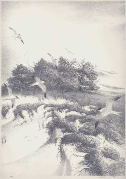 Print by Stow Wengenroth: In from the Sea, Ogunquit, Maine, represented by Childs Gallery