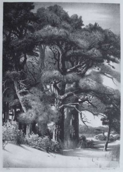 Print by Stow Wengenroth: Quiet Grove [Ognunquit, Maine], represented by Childs Gallery