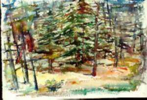 Watercolor by Ted Davis: Cathedral Woods, Monhegan, Maine, represented by Childs Gallery