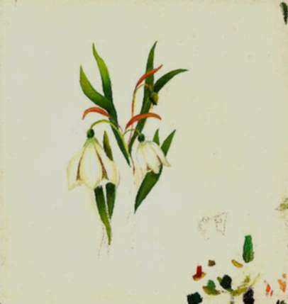 Painting by William Partridge Burpee: (Study of flowers), represented by Childs Gallery
